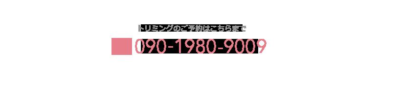 トリミングのご予約はこちらまで TEL: 090-1980-9009
